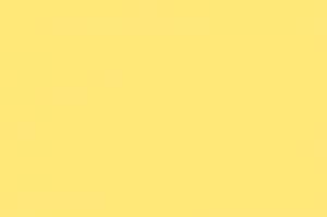 Colorido Fosco